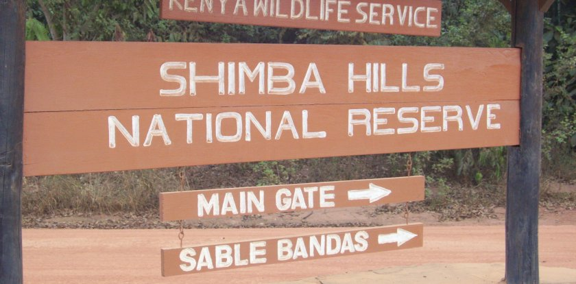 Wildlife Safari in Shimba Hills National Reserve