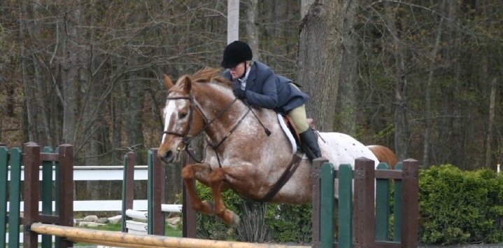 Horseback in Middletown with Suzanne Hourihan