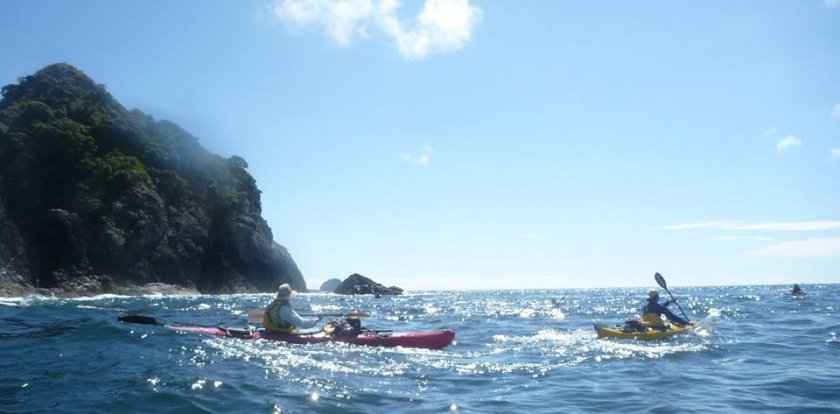 Kayaking in Nelson