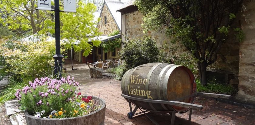 Wine Tour in Adelaide