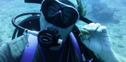 Scuba Diving in Oahu with Andrew