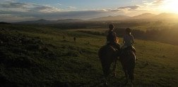 Horseback in Christchurch