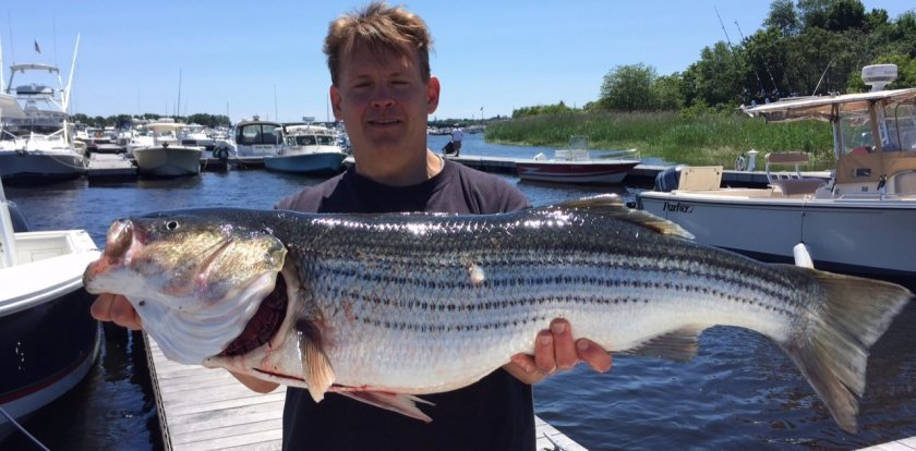 Deep Sea Fishing in Portsmouth with Captain Steve Main