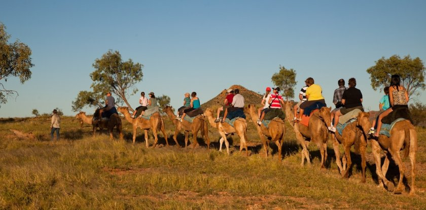 Camel Riding Tour in Alice Springs