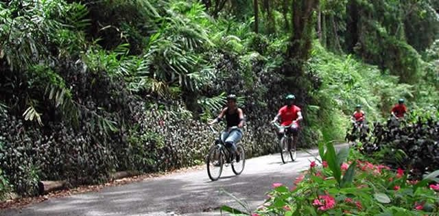 Cycling in Ocho Rios