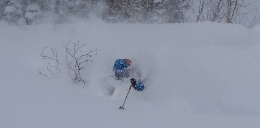 Backcountry Skiing in Hakuba