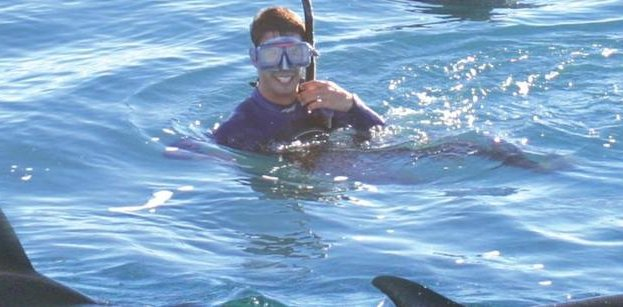 Swimming with Dolphins in Picton
