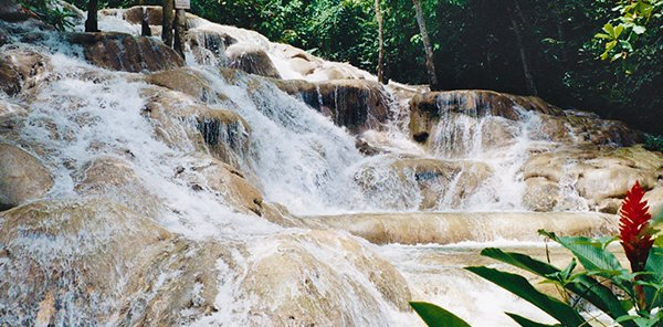 Waterfall Tour in Montego Bay
