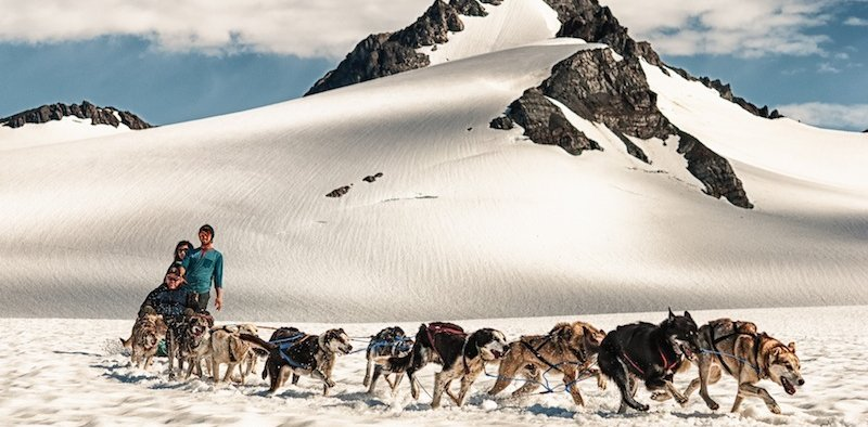 Dog Sledding in Seward