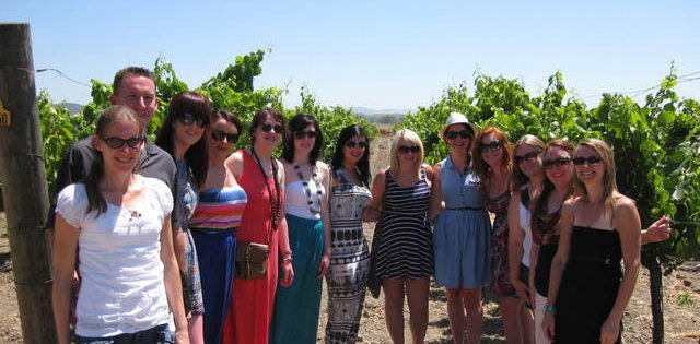 Wine Tour in Napa
