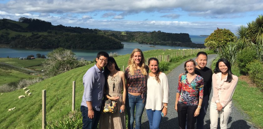 Wine Tour in Auckland