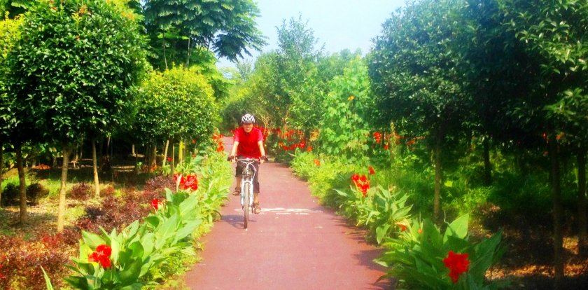 Bike Tour in Chengdu