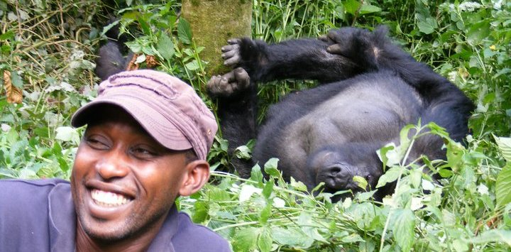Wildlife Safari in Bwindi with Innocent Manda