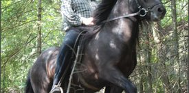 Horseback in Magnetawan with Otmar Fueth