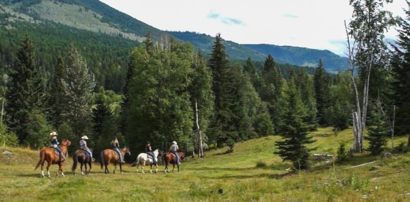 Horseback in Heffley Creek
