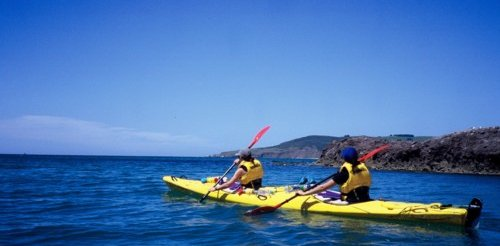 Kayaking in Dunedin