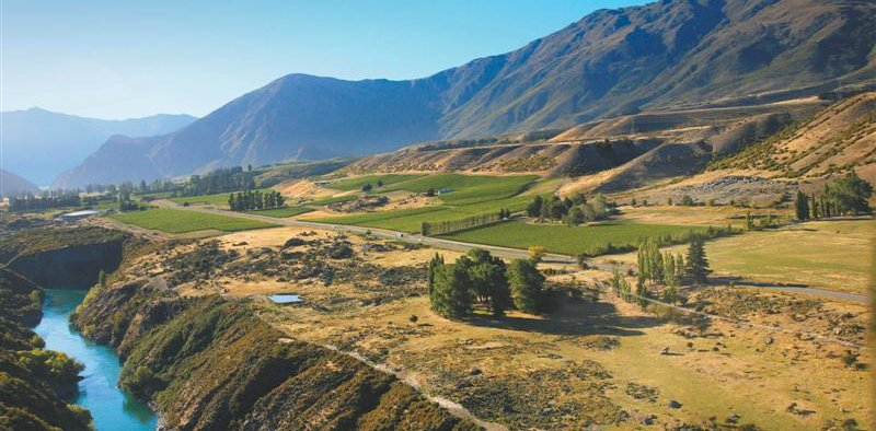 Food Tour in Wanaka