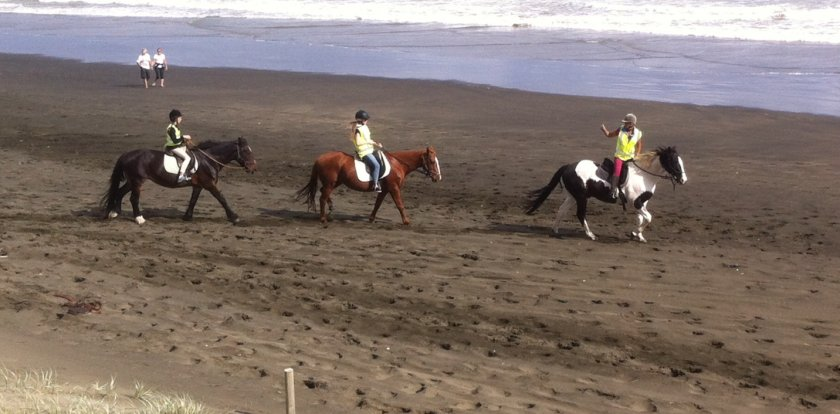 Horseback in Auckland with Antoinette (Nette)