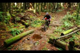 The Truth behind Mountain Biking