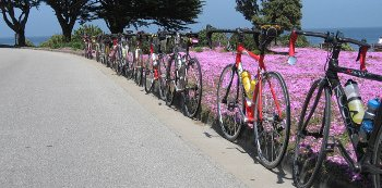 Cycling in Cambria