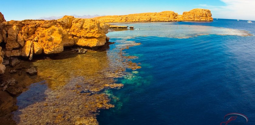 Island Tour in Sharm el Sheikh