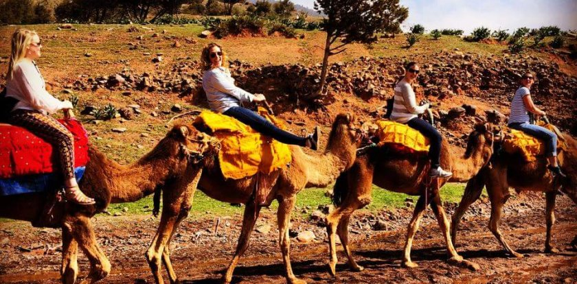 Camel Riding Tour in Marrakech