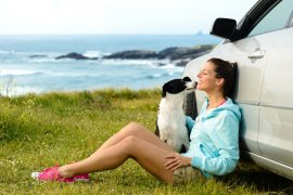 The Secrets to Road Tripping with Pets