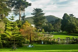 Experience Golden Gate Park