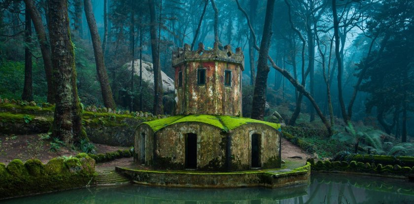Nature Tour in Sintra