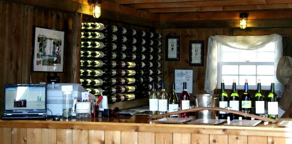 Wine Tour in Mattituck