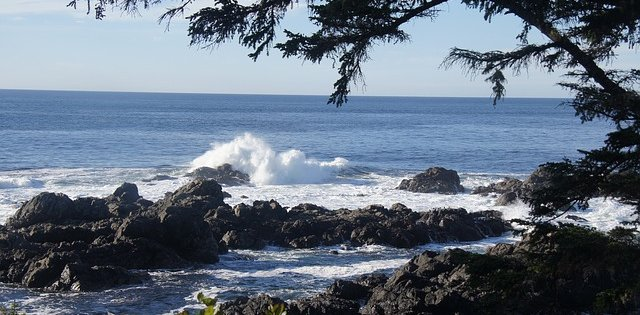 Sailing in Ucluelet
